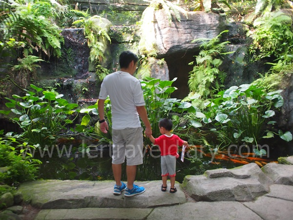 Malacca Butterfly & Reptile Sanctuary